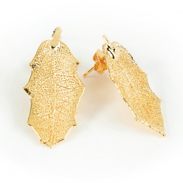 Orecchini a lobo di vere foglie di agrifoglio placcati oro